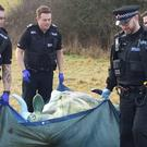 Cycling Moo Kay found after police searched a property in Newdigate, Surrey (Surrey Police/PA Wire)