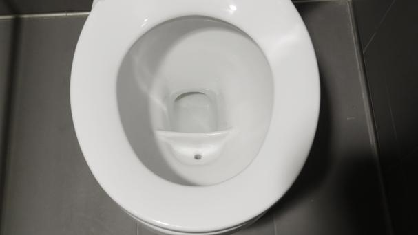 A special toilet at the University of Michigan diverts different waste for the urine-to-fertiliser project (AP)