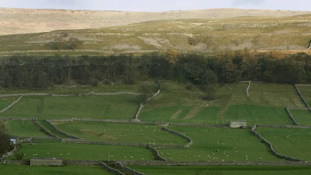 All Aboard: The Country Bus featured real-time footage of the Northern Dalesman bus service 830 as it snaked for 40 miles through the Yorkshire Dales