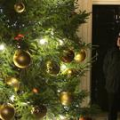 Christmas tree lights turned on in Downing Street