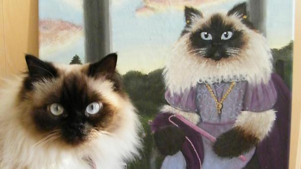 Luna the cat poses next to her portrait