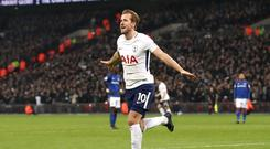 Tottenham's Harry Kane celebrates scoring (John Walton/PA)