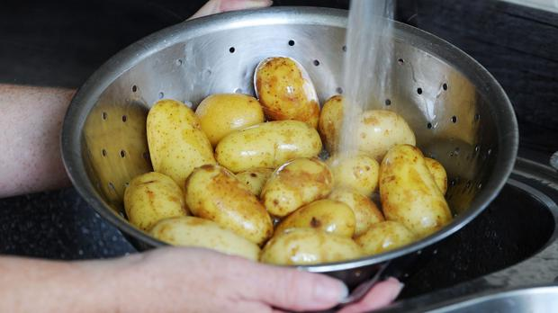 Vegetable stock photo of baby new potatoes being washed in a colander under running water.
