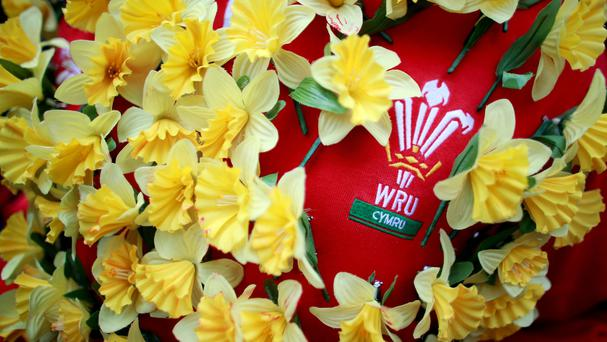 Rugby Union – Dove Men Series – Wales v South Africa – Millennium Stadium