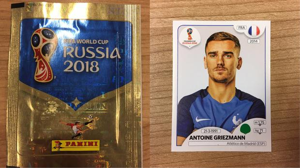 panini sticker wm 2019