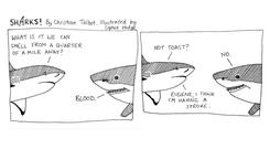 The funny comics often include a dollop of pop culture (Sharks/Christian Talbot and Sophie Hodge/PA)