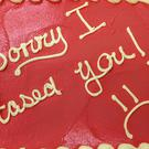 The 'sorry I tased you' cake (Hamilton Township Police Department/PA)