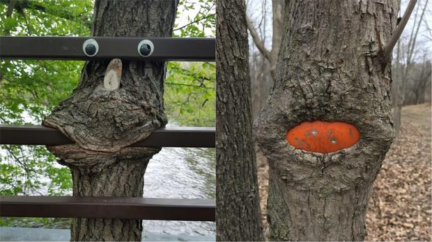 Trees sucking on things