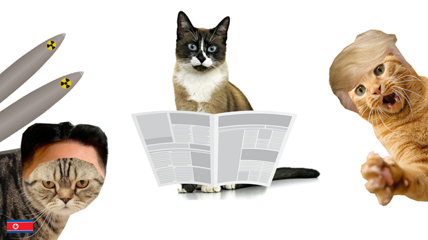 Cats mocked up as international news figures (NewsByCats.com)