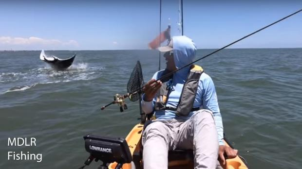 A ray jumps out of the water in Texas (Mark DeLaRosa, YouTube/MDLR Fishing)
