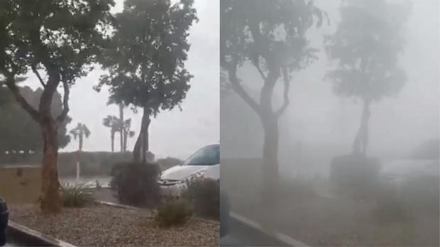 The video shows winds getting progressively stronger over the length of a minute in a storm that has uprooted trees (Matthew Strauser)