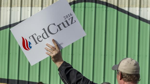 A Ted Cruz supporter (gjohnstonphoto/Getty)