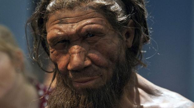 Neanderthals had the brains to build weapons for long-distance destruction, research shows. Photo: PA