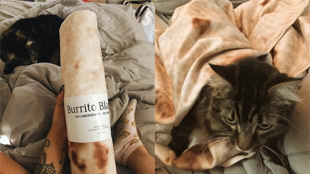 A burrito blanket delivered to a Twitter user (@katreenawhh/Twitter)