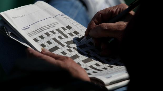 A newspaper reader completes a crossword (Steven Paston/PA)