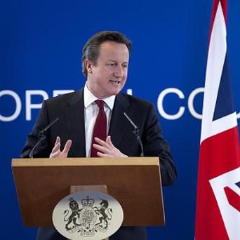 Prime Minister David Cameron is pushing ahead with plans to scrap a Syrian arms embargo (AP)