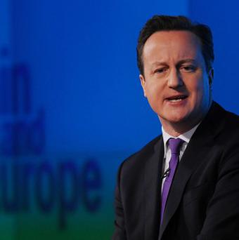 David Cameron has promised to renegotiate Britain's relations with the EU if the Conservatives win the next election