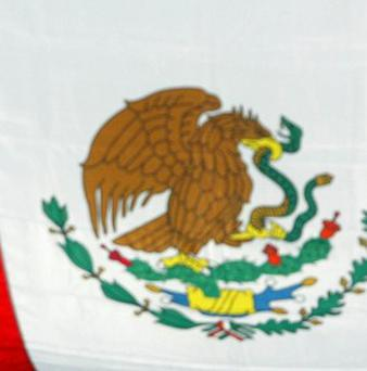 Ten members of a band were killed and five injured in a road accident in northern Mexico