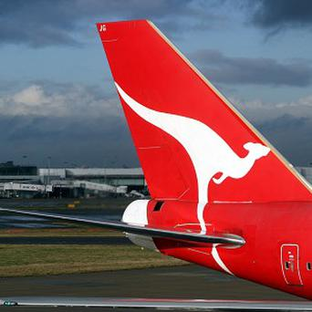 Staff found a small snake in the passenger cabin on a Qantas Boeing 747 at Sydney International Airport
