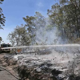 A firefighter sprays foam on smoldering bush to help reduce re-flash fires after a blaze swept through Faulcombridge, 53 miles west of Sydney (AP)