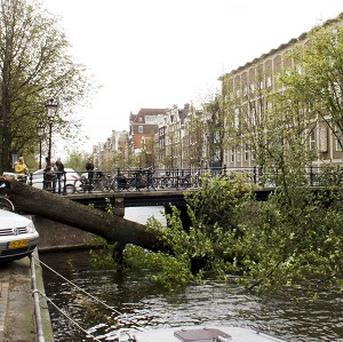 A fallen tree blocks the Herengracht canal in Amsterdam (AP)