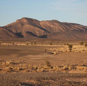 Ninety-two migrants died of thirst in the Sahara desert after their truck broke down.