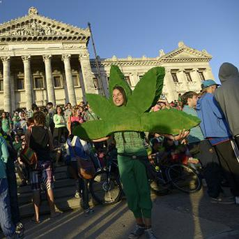 Uruguay's Senate has approved the world's first national marketplace for legal marijuana
