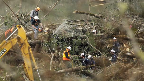 A worker cuts a tree with a chainsaw next to a PV - 'possible victim' - marking in the mudslide debris field (AP)