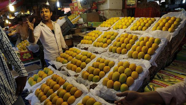 Dozens of Alphonso mangoes on sale at a market in Mumbai, India (AP)