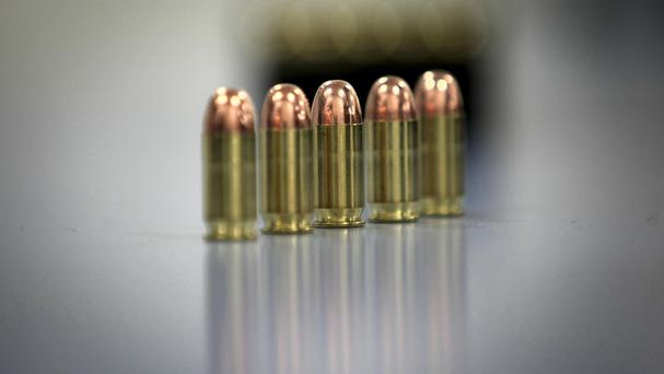 Eight gold miners have been found shot dead on the eastern outskirts of Johannesburg