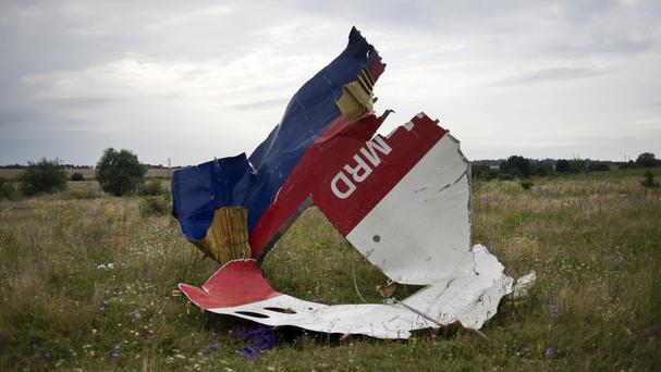 A piece of the crashed Malaysia Airlines flight 17 lies in the grass near the village of Hrabove, eastern Ukraine (AP)