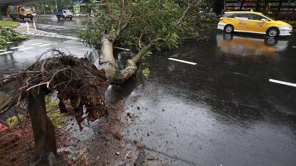 Typhoon Matmo has caused devastation across Taiwan (AP)