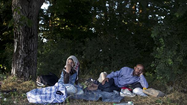 Migrants from Syria take a break in a wooded area in Presevo, close to the Serbian border. (AP)
