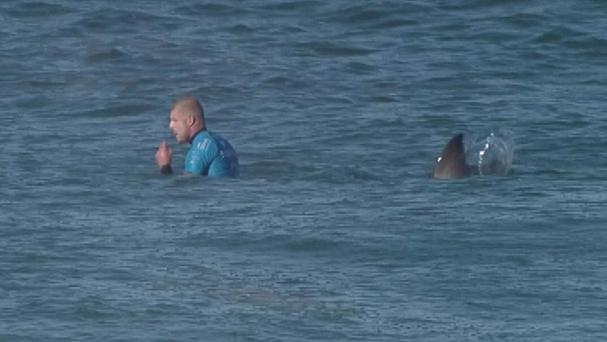 Mick Fanning moments before he was knocked off his board by a shark (World Surf League/AP)