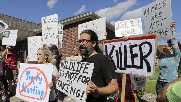 Protesters gather outside Dr Palmer's clinic in Bloomington (AP)