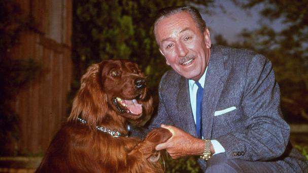 Walt Disney poses for a photo with an Irish setter in 1965 (AP)