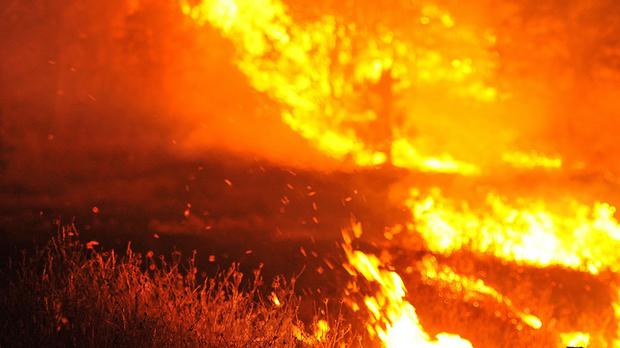 The Agricultural Ministry said it had sent four water-carrying planes and a helicopter to help extinguish the fire