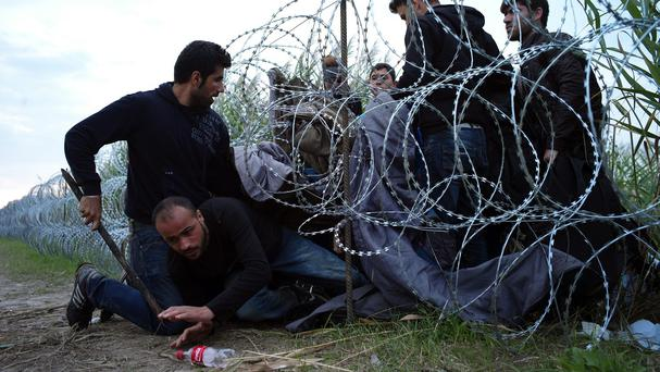 Syrian refugees cross into Hungary underneath the border fence on the Hungarian - Serbian border near Roszke. (AP)