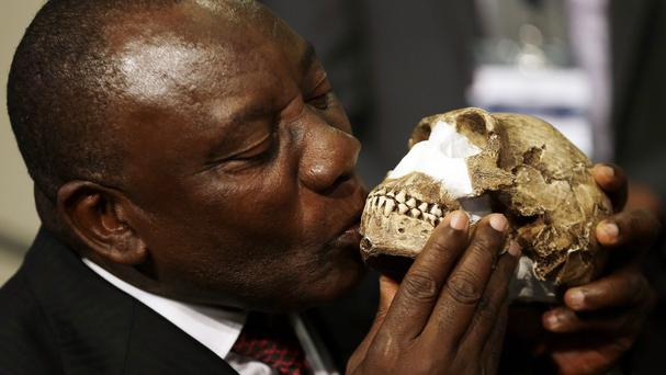 South Africa's deputy president Cyril Ramaphosa kisses a reconstruction of Homo naledi's face (AP)