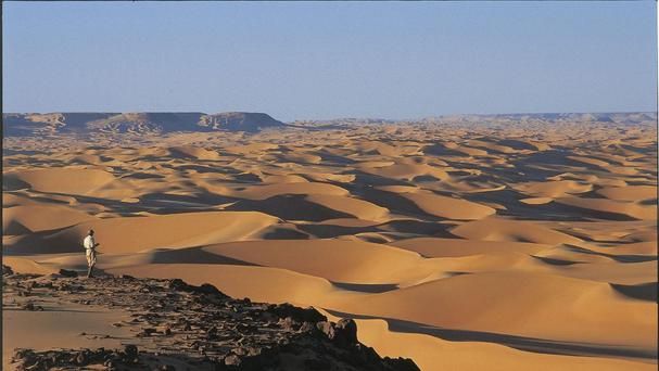 The incident took place in Egypt's western desert