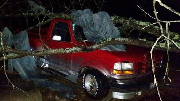 A fallen tree hit a pick-up truck in Holly Springs, Mississippi, after a storm struck the town (AP)