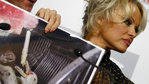 Pamela Anderson displays photos during a news conference at the French National Assembly (AP)