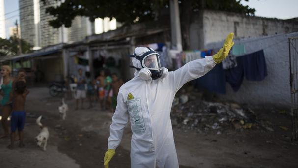 Experts in Recife, Brazil, try to destroy Aedes aegypti mosquitoes that transmit the Zika virus (AP)