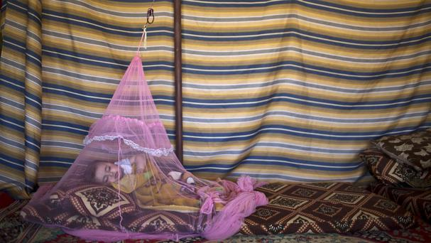 Seven-month-old Syrian refugee Mariam Mohammed sleeps under a mosquito net at an informal settlement in Jordan (AP)