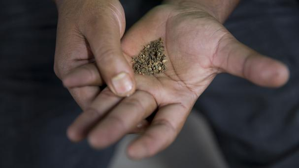 A man prepares tobacco in his hand before chewing it (AP)
