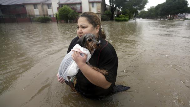A resident carries her dog through floodwaters in Houston (AP)