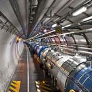 The Large Hadron Collider has been immobilised by a weasel (Cern)