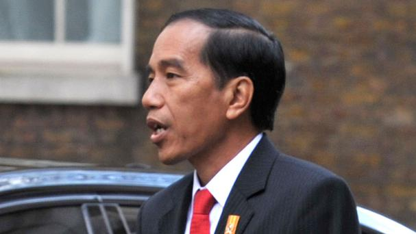 Indonesian president Joko Widodo said the men are in good condition
