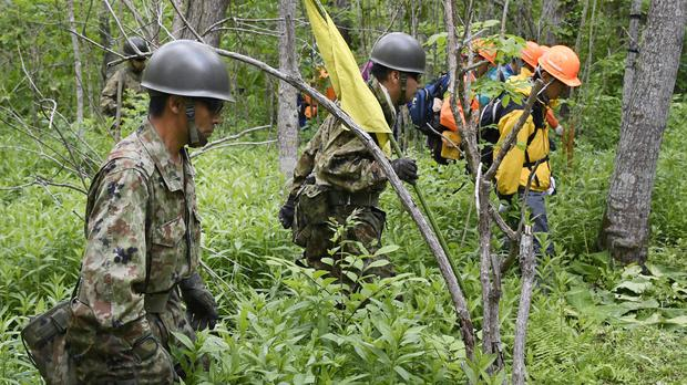 Ground Self-Defence Force members search for Yamato in the forest (Kyodo News/ AP)