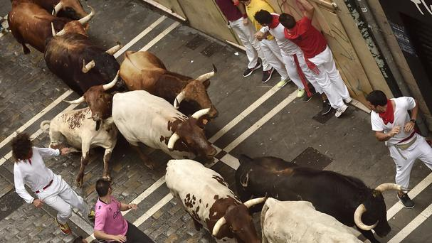Revellers run beside bulls at the San Fermin Festival